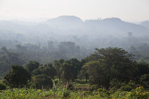 The landscape around Dent de Man with plantations, trees and mountains | Dent de Man | Ivory Coast