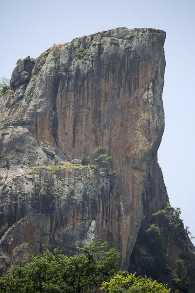 Foto di The vertical wall of the Dent de Man seen from the north - Costa d'Avorio - Africa