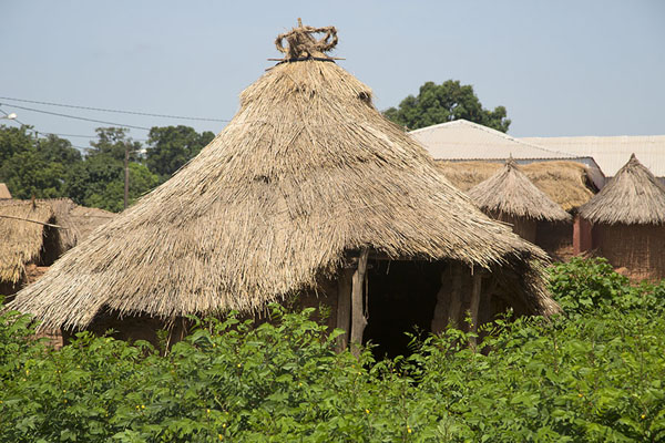 Picture of Special hut with crown-like decoration, where female deceased are kept until being buriedNiofoin - Ivory Coast