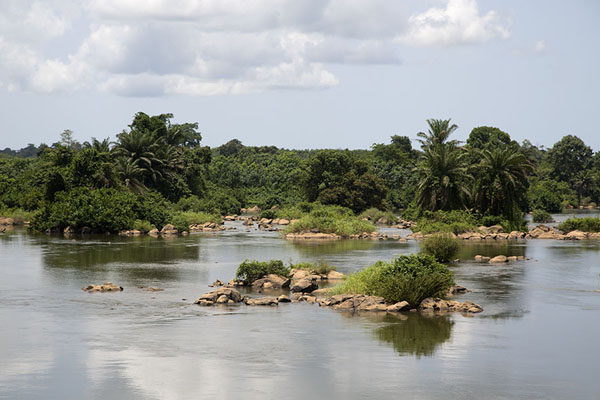 Rocks and trees in the Sassadra river | Pont Weygand | Ivory Coast