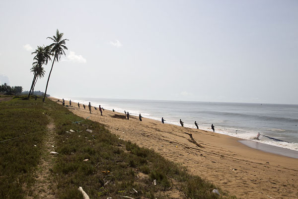 Photo de The beach off Sassandra where fishermen use netsSassandra - Côte d'Ivoire