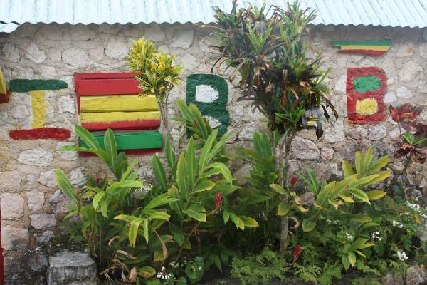 Foto van Rasta colours decorate all the houses on the premisesNine Mile - Jamaica