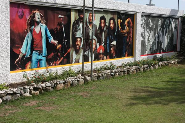 Wall with some memorable pictures of the life of Bob Marley | Bob Marley Museum | 牙买加