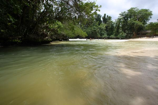 Picture of Frenchman's Cove Beach (Jamaica): River reaching the sea at Frenchman's Cove Beach