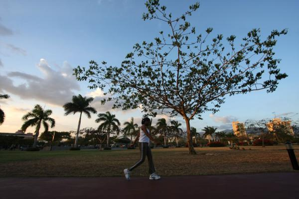 Foto van Jogger passing a tree in Emancipation Park - Jamaica - Amerika