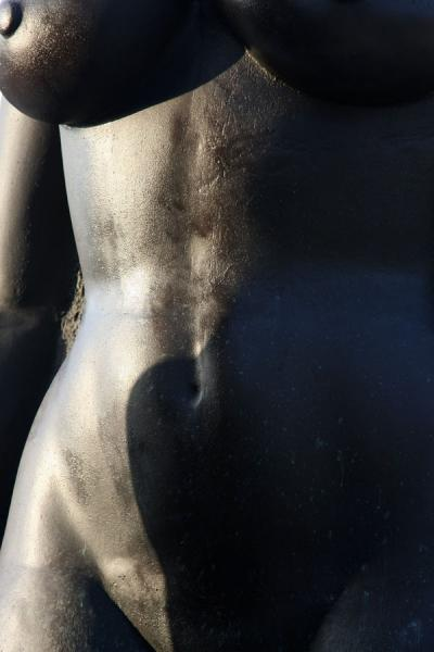 Photograph of Female nude close-up, part of the Redemption Song statue - ...
