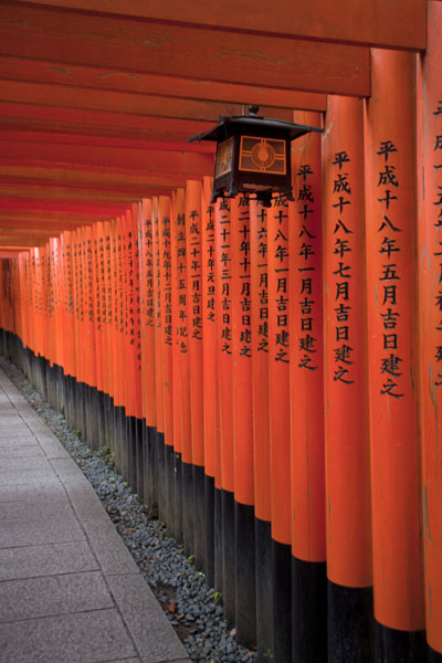 Orange torii gates with lantern京都 - 日本