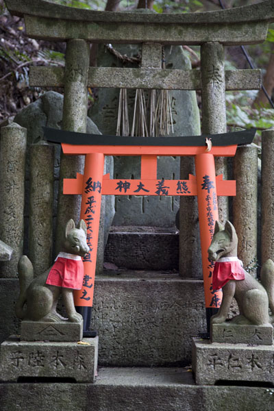 Two foxes guarding torii at a small shrine on the slopes of Inari-san | Fushimi Inari-taisha | Japan