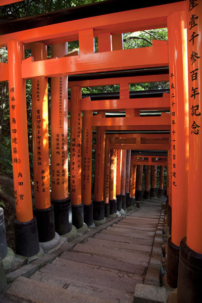 Foto van Tunnel of torii on the slopes of Inari-sanKyoto - Japan