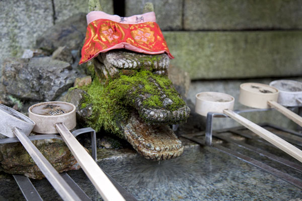 Foto de Moss-covered animal-head shaped fountain headKioto - Japón