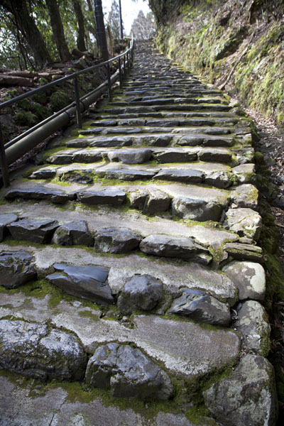 The stone stairs leading up to the entrance of the Jingo-ji complex | Temple Jingo-ji | Japon