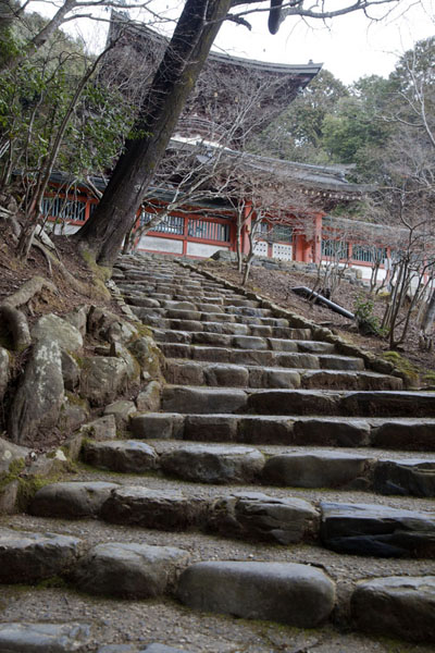 Stairs leading up the hill to the Two Storied Pagoda | Temple Jingo-ji | Japon