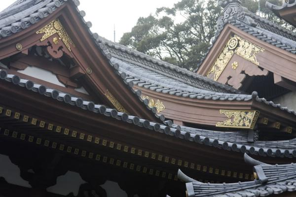 Close-up of typical roofs of the Hase-dera temple | Kamakura | Japón