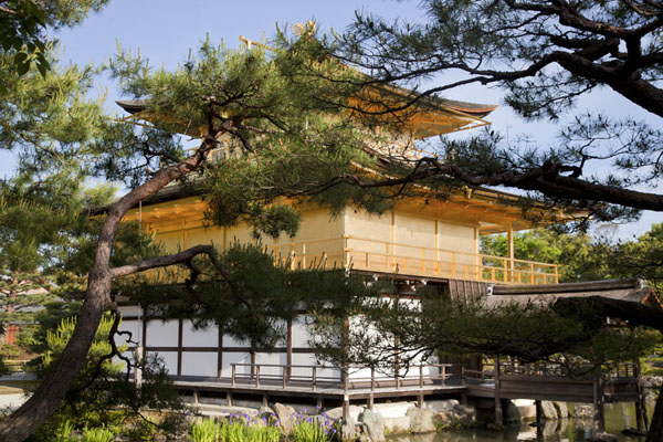 The brilliant golden exterior of Kinkaku-ji seen through trees | Kinkaku-ji | Japon