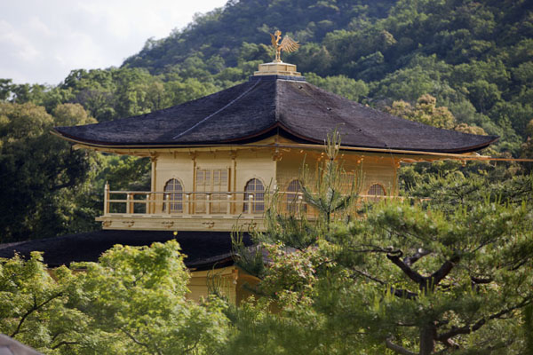 Foto de The top of the Kinkaku-ji temple seen from a distanceKioto - Japón