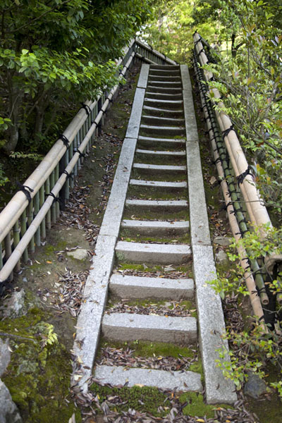 Stairs leading uphill at the Kinkaku-ji complex | Kinkaku-ji | Japon