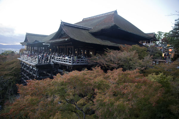 The Main Hall, or Hon-do, rising from the trees in autumn colours | Kiyomizu-dera | Japón