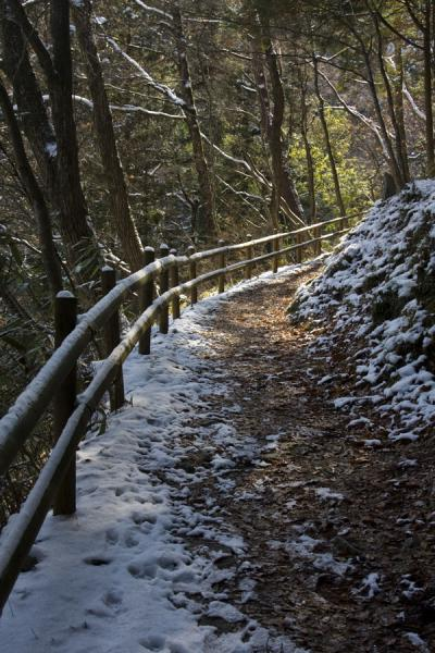 Nakasendo leading up a hill | Nakasendo | Japn