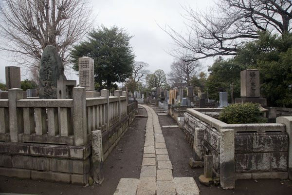 Foto van One of the many lanes of Yanaka cemeteryTokyo - Japan