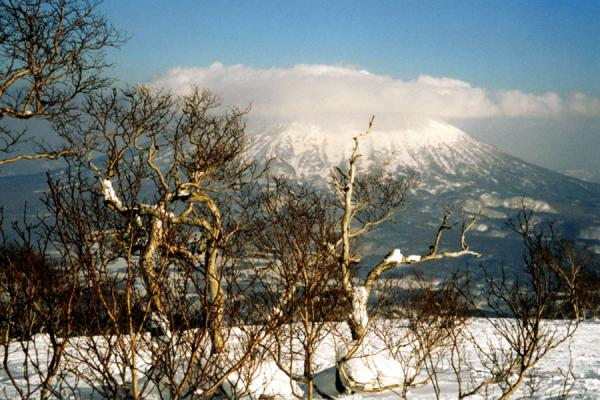 Picture of Mount Yotei Volcano
