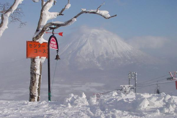 Picture of Niseko Skiing