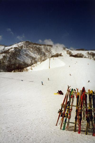 Skis parked at the end of one of the runs | Niseko Skiing | Japan