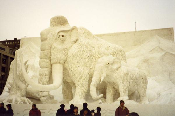 Mammoths made of snow | Sapporo Snowfestival | Japan
