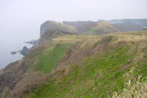 Landscape near Cape Shakotan | Shakotan National Park | Japan