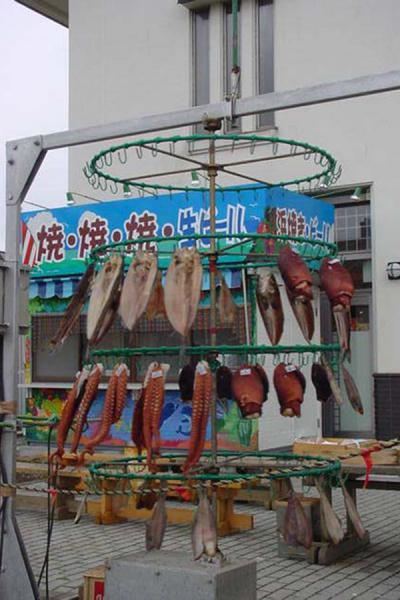 Drying fish on a windmill | Shakotan National Park | Japan