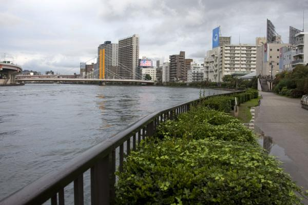 Walkway along the banks of the Sumida river东京 - 日本
