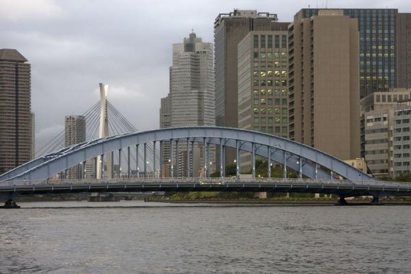 Eitaibashi and Chuo ohashi bridges crossing Sumida river | Promenade fleuve Sumida | Japon
