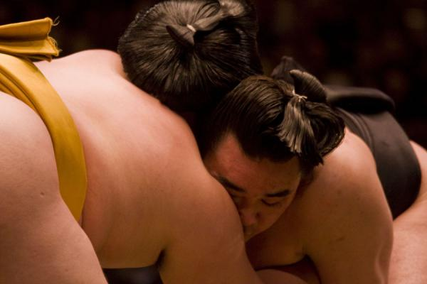 Sumo wrestlers engaged in a close battle | Sumo worstelen | Japan
