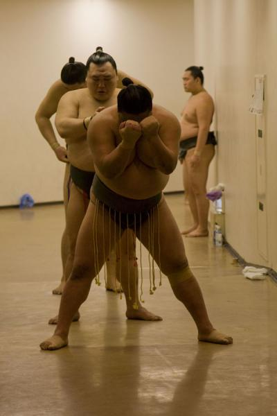 Foto di Preparations before entering the sumo hallTokio - Giappone