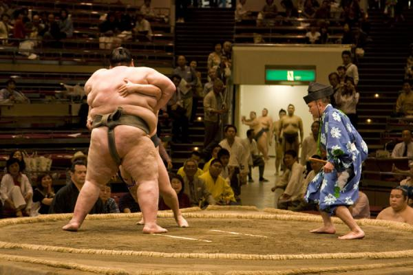 Foto de Sumo wrestlers on the dohyo with gyoji (referee) watching closelyTokio - Japón