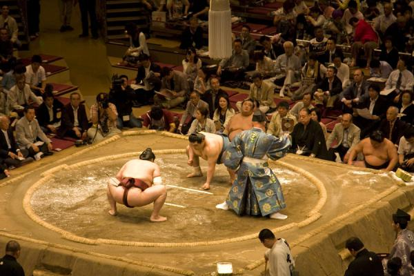 Foto de Sumo bout just before the startTokio - Japón