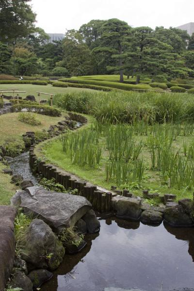 Picture of Imperial Gardens (Japan): Landscape of the East Imperial Gardens: Ninomaru Garden