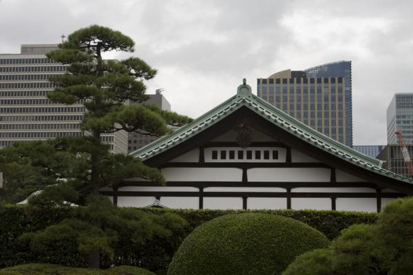 Traditional house with modern skyline in the background | Imperial Gardens | Japan