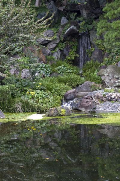 Picture of Imperial Gardens (Japan): Pond and waterfall in the East Imperial Gardens