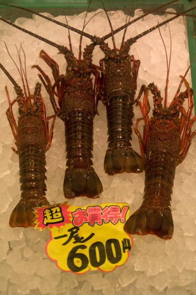 Lobsters on ice at Tsukiji market | Tsukiji Central Fish Market | Japan