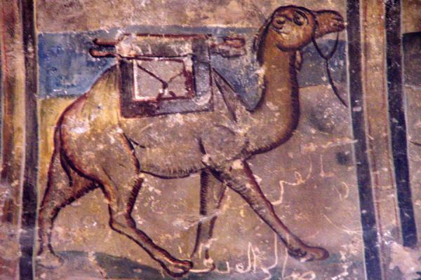 Picture of Desert Castle Loop (Jordan): Camel fresco in Qasr al-Amra, near Amman