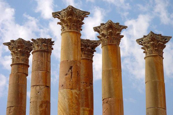 Picture of Jerash: columns of Temple of Artemis