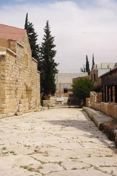 Picture of Madaba Archaeological Park (Jordan): Roman street, Madaba