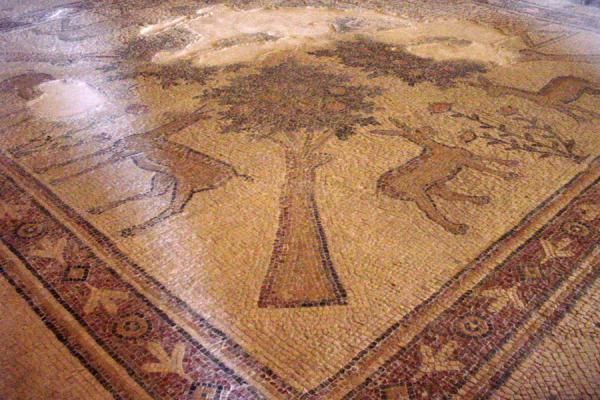 Mosaic in the restored Apostles Church | Madaba Mosaic churches | Jordan