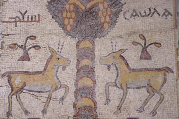 Animals are an important subject for mosaics | Mount Nebo | Jordan