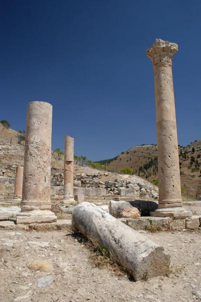 Some of the few pillars of the East Church | Pella | Jordanië