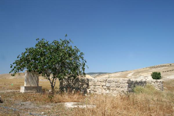 Foto van Remains of the small mosque in commemoration of the battle of FahelPella - Jordanië