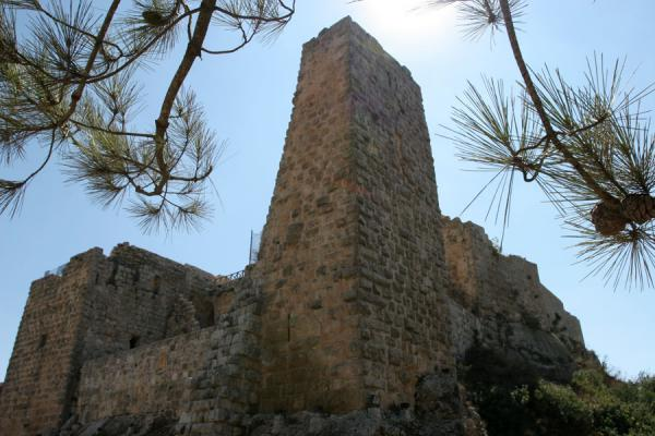 的照片 约旦 (Watchtower of Qalat ar-Rabad seen from below)