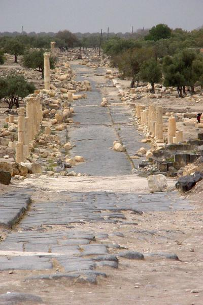 Picture of Umm Qais (Jordan): Umm Qais: Colonnaded street