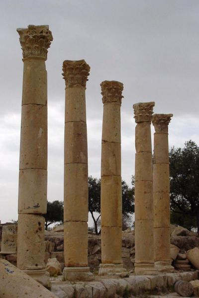 Picture of Umm Qais (Jordan): Marble columns, Umm Qais