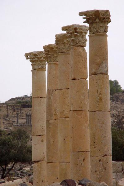 Picture of Umm Qais (Jordan): White columns in Umm Qais